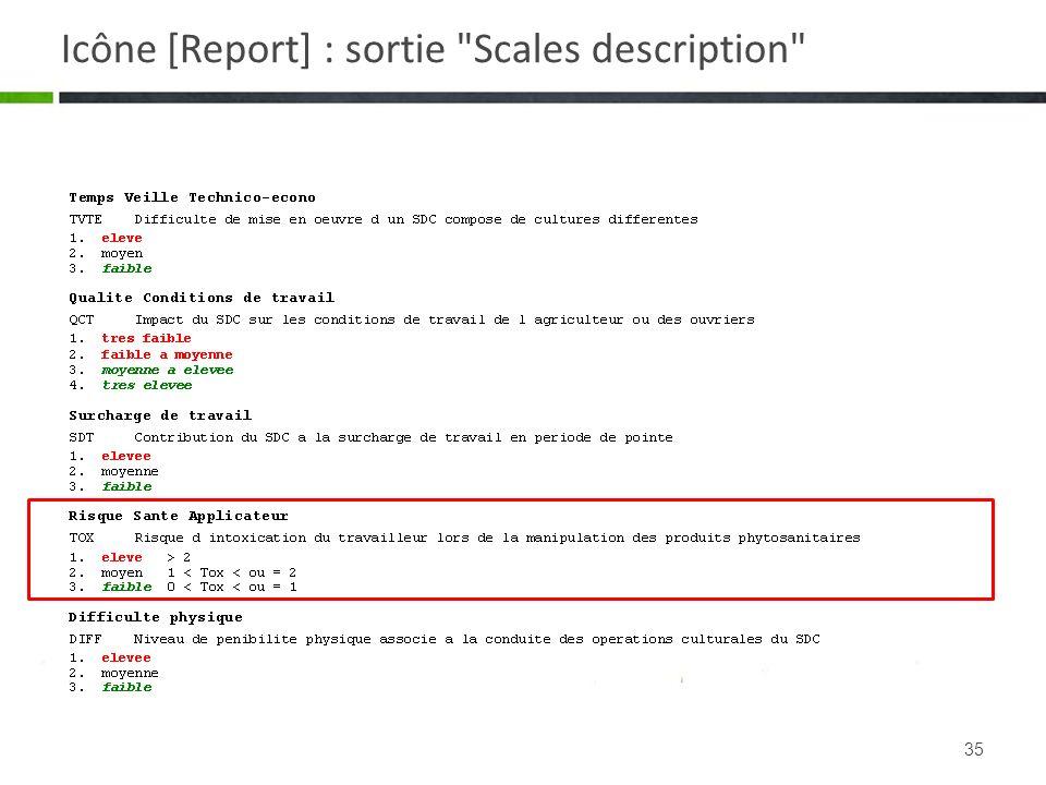 Icône [Report] : sortie Scales description